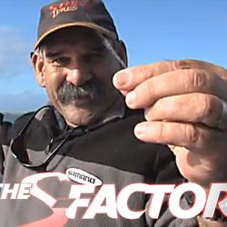 S-Factor. The Squidgies 5 Reboot.Client: Shimano Fishing, Australia. Video production design & execution of Squidgies reboot.